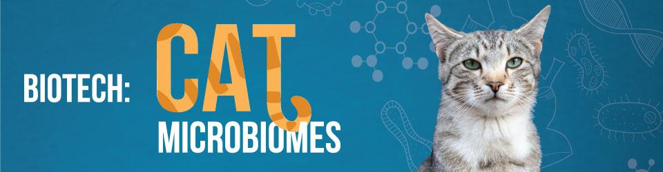 Biotech: Cat Microbiomes